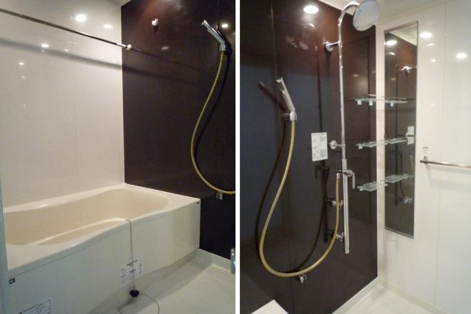 apartment bathroom shower room