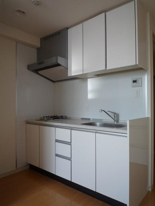 apartment kitchen close up